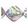 Shell 16x16mm Diamond Abalone